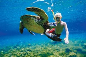 swim with turtles lano beach savaii boy